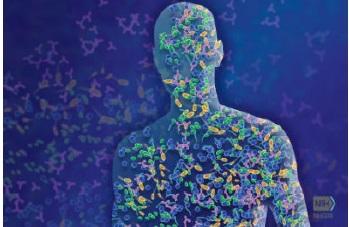 cosmeticos probiotico e prebiotico